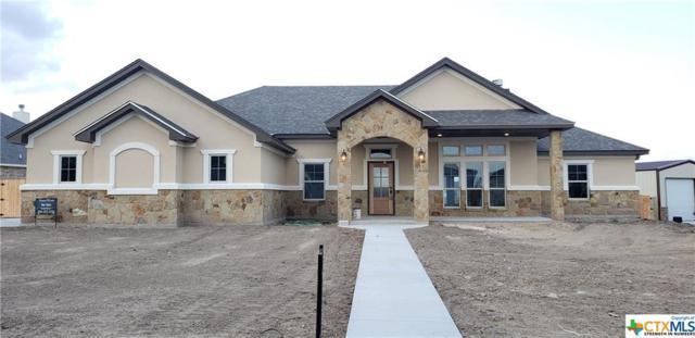 4206 Green Creek Drive, Salado, TX 76571 (MLS #368079) :: Erin Caraway Group