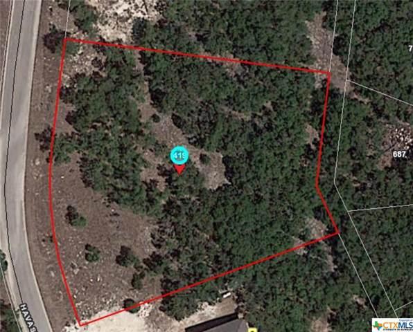 419 Havasu Point, Spring Branch, TX 78070 (MLS #380654) :: Vista Real Estate