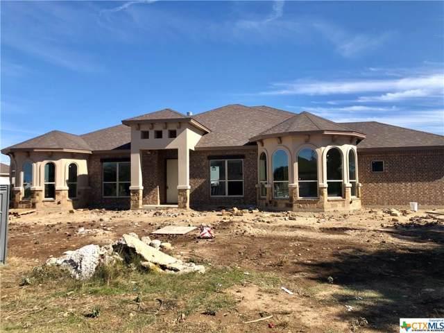 8562 Spring Creek Loop, Salado, TX 76571 (MLS #380685) :: Vista Real Estate