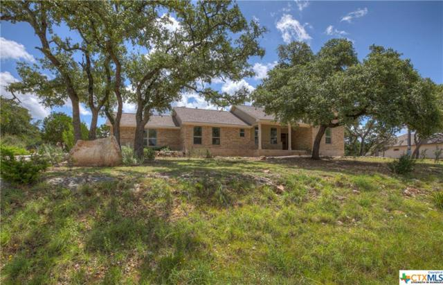 135 Flanders, Fischer, TX 78623 (MLS #381627) :: The i35 Group