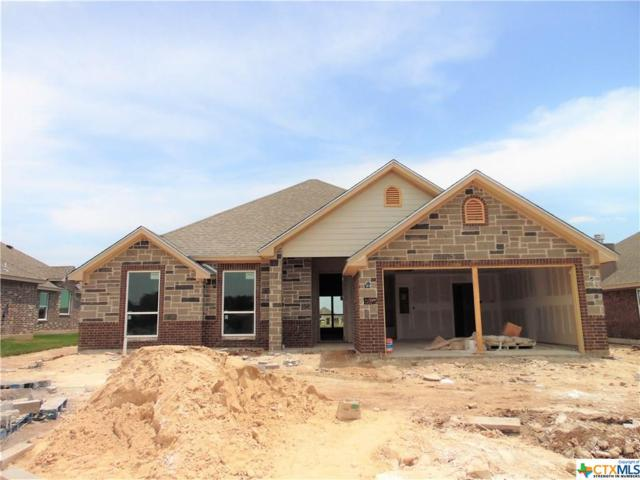 2605 Turtle Dove Drive, Temple, TX 76502 (#382843) :: Realty Executives - Town & Country