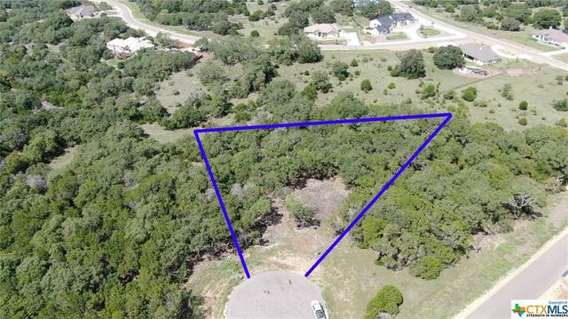 1218 Stone Gully, New Braunfels, TX 78132 (MLS #391864) :: The Real Estate Home Team