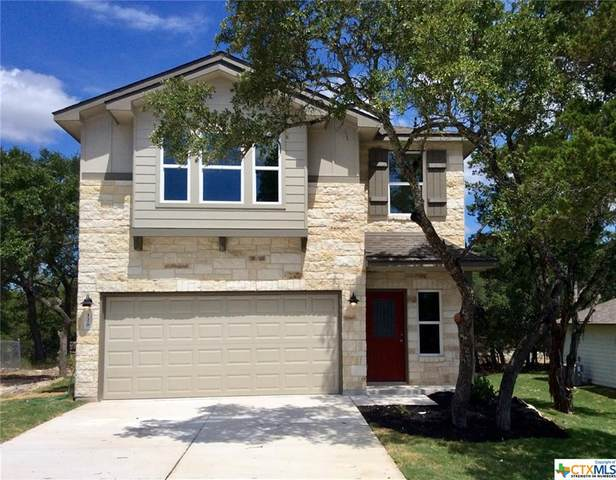 120 Lakeview Court, Spring Branch, TX 78070 (MLS #410198) :: The Real Estate Home Team