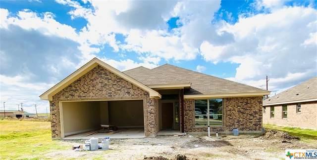 307 Woods Drive, Gatesville, TX 76528 (MLS #418824) :: Brautigan Realty