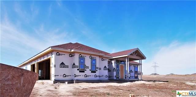 6107 Wye Oak Drive, Salado, TX 76571 (MLS #427830) :: The Real Estate Home Team