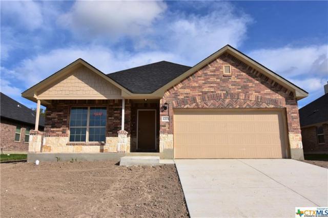 6203 Morganite Lane, Killeen, TX 76542 (MLS #8219431) :: Erin Caraway Group