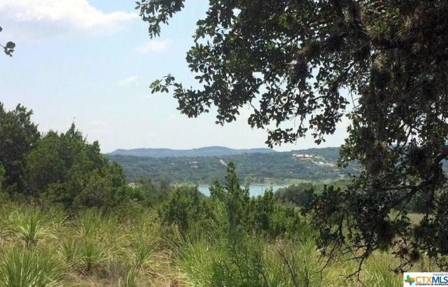 268 San Salvadore, Canyon Lake, TX 78133 (MLS #322005) :: Magnolia Realty