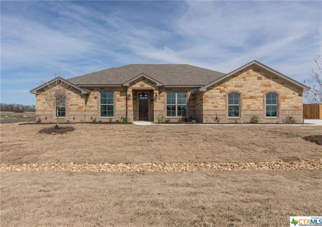 8318 Tesoro Drive, Temple, TX 76504 (MLS #349941) :: Erin Caraway Group