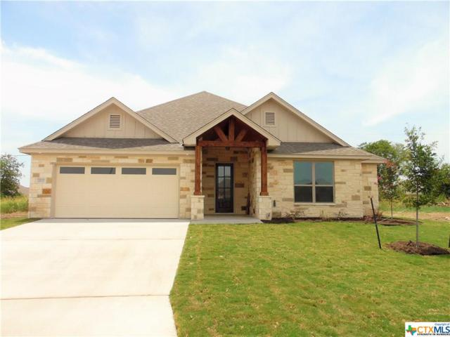 7203 Diamond Dove Drive, Temple, TX 76502 (#382072) :: Realty Executives - Town & Country