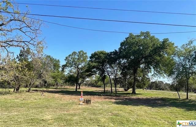 2889 Oak Haven Circle, Georgetown, TX 78628 (MLS #435073) :: Kopecky Group at RE/MAX Land & Homes