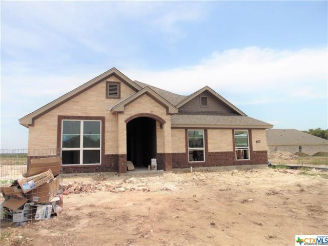 2609 Turtle Dove Drive, Temple, TX 76502 (#382080) :: Realty Executives - Town & Country