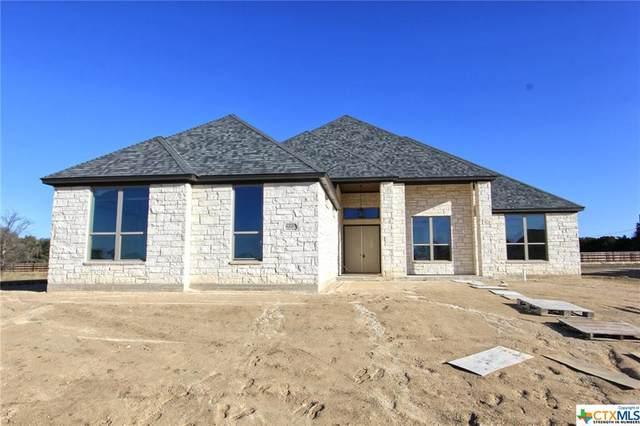 8220 Collins Creek Drive, Salado, TX 76571 (MLS #415247) :: The Real Estate Home Team