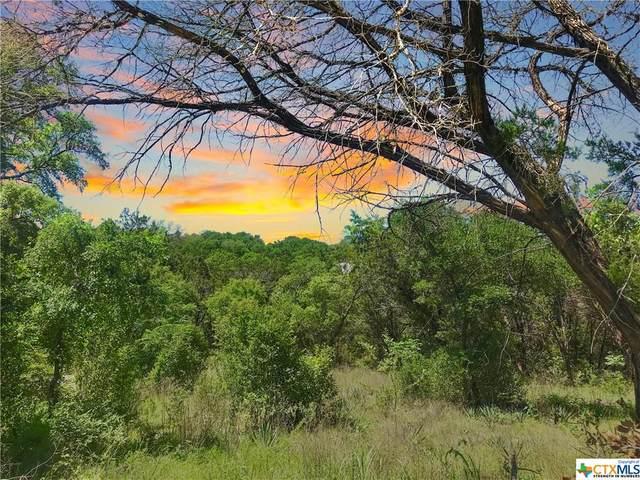 18 Aztec Lane, OTHER, TX 76513 (MLS #407632) :: Rebecca Williams