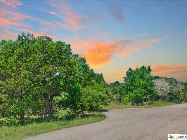 18 Aztec Lane, OTHER, TX 76513 (MLS #407632) :: Texas Real Estate Advisors