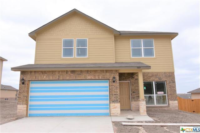 3809 Flatrock Mountain Drive, Killeen, TX 76549 (MLS #8219437) :: Erin Caraway Group