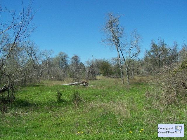 286 Signal Hill Road, Seguin, TX 78155 (MLS #209774) :: Magnolia Realty