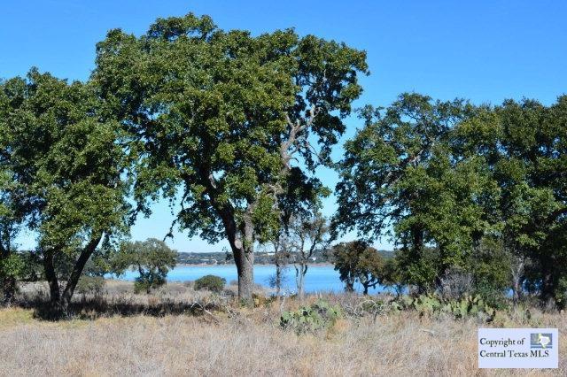 754 Arthur Court, Spring Branch, TX 78070 (MLS #217944) :: Magnolia Realty