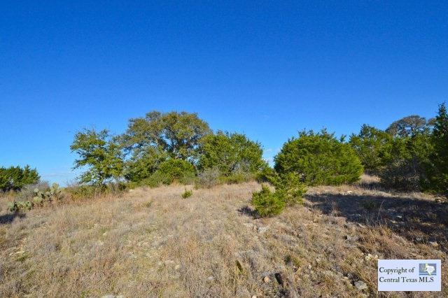 984 Mystic Parkway, Spring Branch, TX 78070 (MLS #218847) :: Magnolia Realty