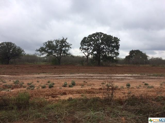 4011 Jakes Colony, Seguin, TX 78155 (MLS #305055) :: Magnolia Realty