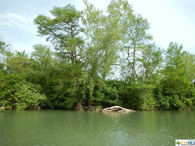 228 Deerslayer Drive, Seguin, TX 78155 (MLS #306797) :: Magnolia Realty