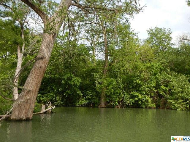 232 Deerslayer Drive, Seguin, TX 78155 (MLS #309332) :: Magnolia Realty