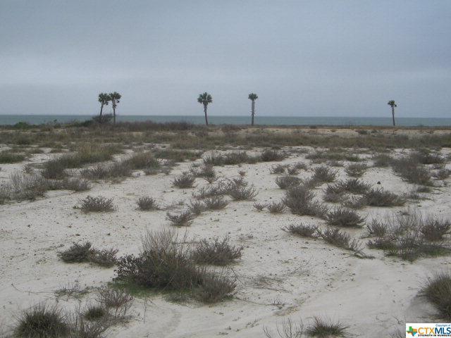 000 Bay Club Drive, Seadrift, TX 77983 (MLS #329493) :: RE/MAX Land & Homes