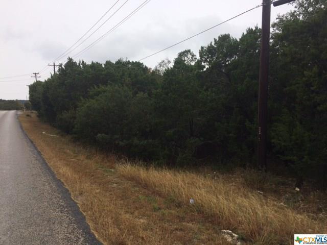 523 Canyon Bend, Canyon Lake, TX 78133 (MLS #331566) :: Magnolia Realty