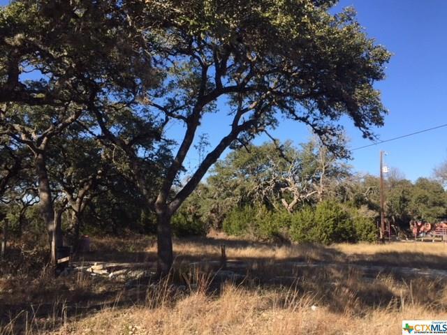 0 Fm 306, Canyon Lake, TX 78133 (MLS #333446) :: The i35 Group