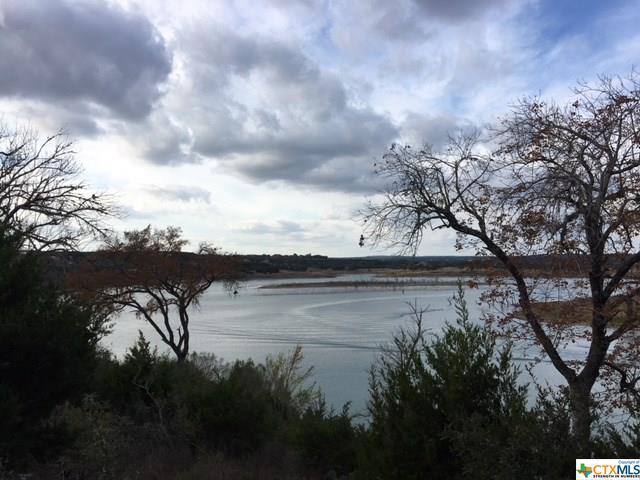 2030 San Jose Way, Canyon Lake, TX 78133 (MLS #333451) :: Magnolia Realty