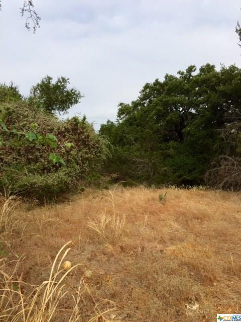 TBD Aztec, Morgan's Point, TX 76513 (MLS #334598) :: Magnolia Realty
