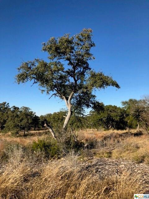 5918 Camp Creek, New Braunfels, TX 78132 (MLS #336622) :: Magnolia Realty