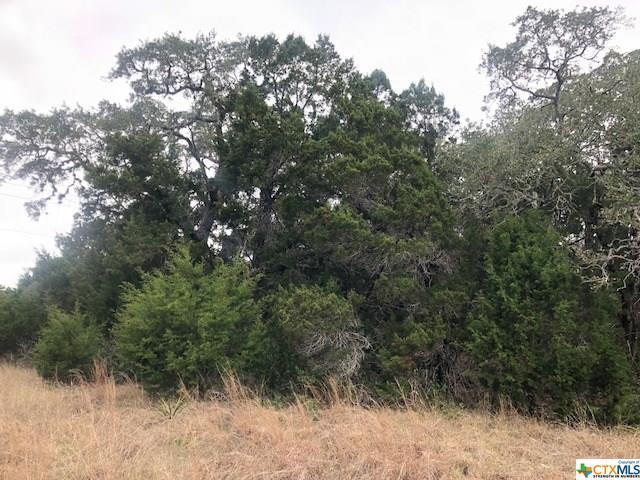 1015-1011 N Las Brisas Drive, Canyon Lake, TX 78133 (MLS #339590) :: Magnolia Realty