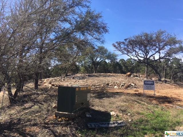 112 Woodacre Drive, Wimberley, TX 78676 (MLS #339640) :: Erin Caraway Group