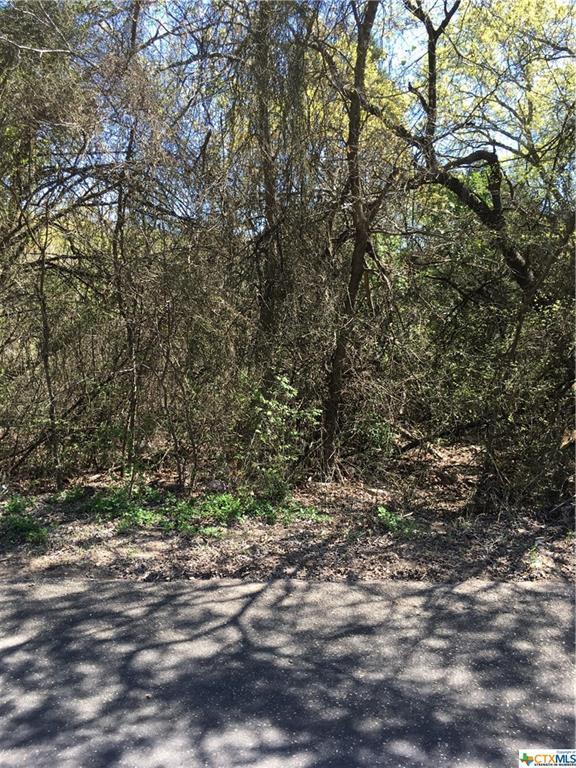 2569 Vista Trail, Belton, TX 76513 (MLS #340911) :: The i35 Group