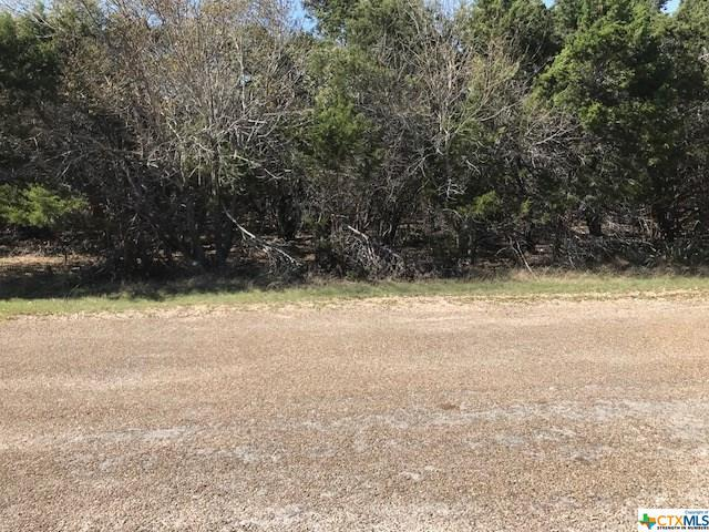 4902 Goliad, Belton, TX 76513 (MLS #342290) :: Magnolia Realty
