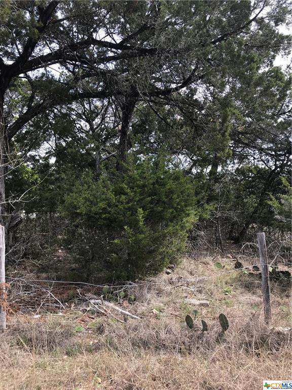 000 Seven Coves Loop, Temple, TX 76502 (MLS #342539) :: Erin Caraway Group