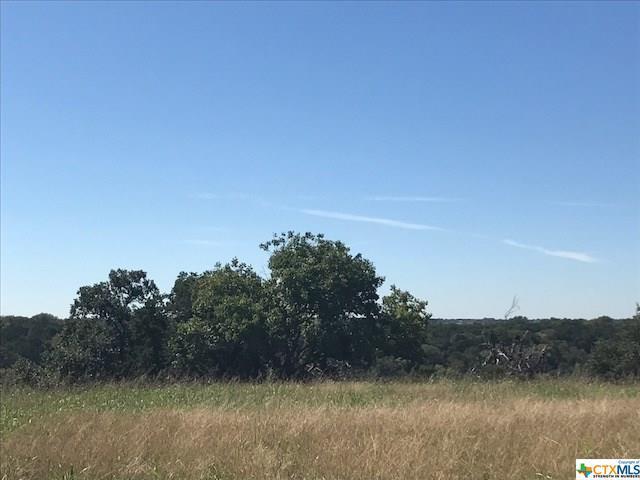 5832 Hamlet Drive, Belton, TX 76513 (MLS #343865) :: Magnolia Realty