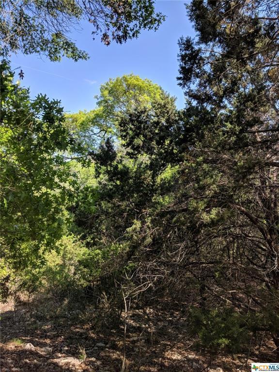 258 Wilderness, Canyon Lake, TX 78133 (MLS #344403) :: Berkshire Hathaway HomeServices Don Johnson, REALTORS®
