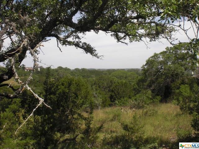257 Starling Pass, Spring Branch, TX 78070 (MLS #344903) :: Erin Caraway Group