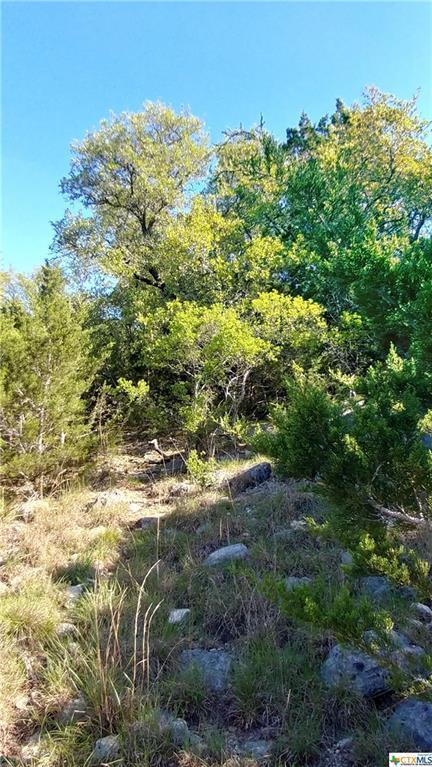 119 Sawgrass, Spring Branch, TX 78070 (MLS #344926) :: Erin Caraway Group
