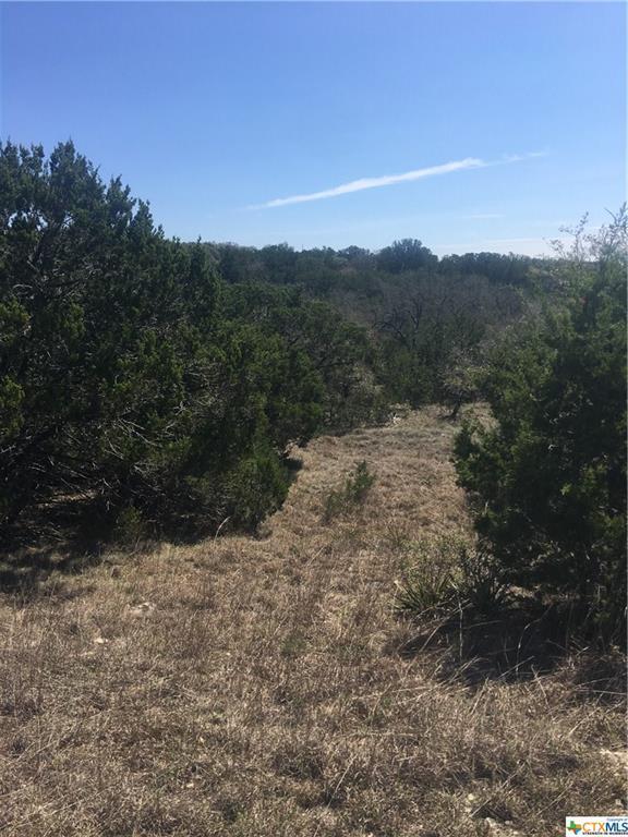 193 Magnolia Mdw, Canyon Lake, TX 78130 (MLS #345131) :: Magnolia Realty
