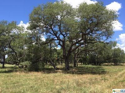 000 Post Oak, Inez, TX 77968 (MLS #345298) :: RE/MAX Land & Homes