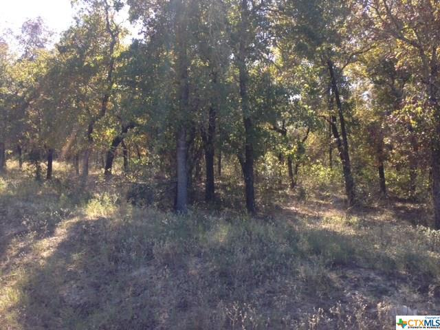 Lot 46 Powder Ridge, Luling, TX 78648 (MLS #345721) :: Erin Caraway Group