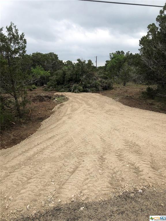 1149 Hedgestone, Canyon Lake, TX 78133 (MLS #346479) :: Magnolia Realty
