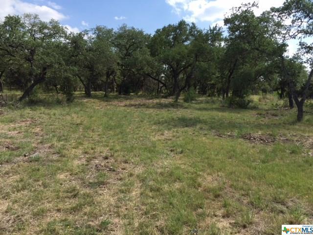 1623 Lake Ridge, Canyon Lake, TX 78133 (MLS #347311) :: Magnolia Realty