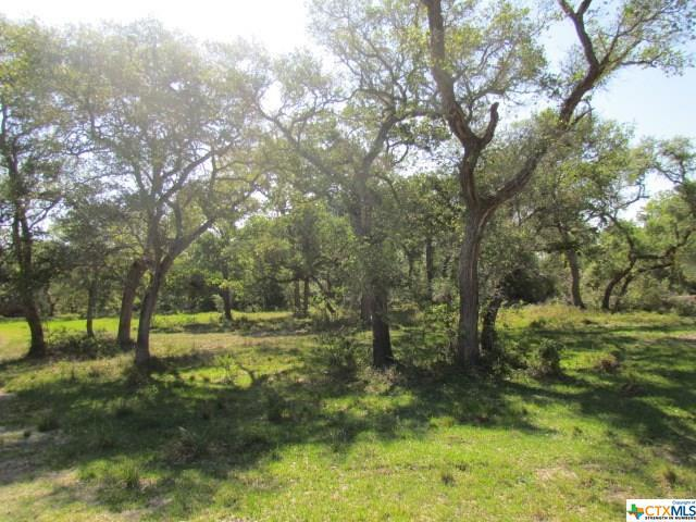 914 N Fm 444, OTHER, TX 77968 (MLS #347849) :: Magnolia Realty