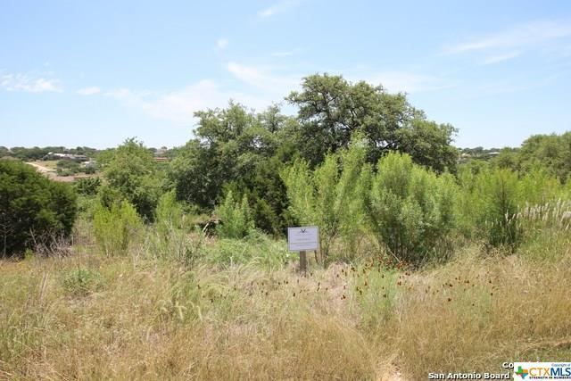 1458 Via Principale, New Braunfels, TX 78132 (MLS #348278) :: Berkshire Hathaway HomeServices Don Johnson, REALTORS®