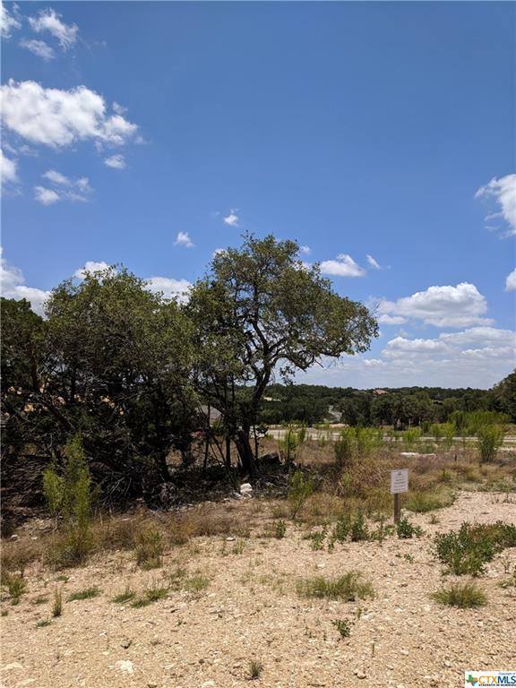 TBD Ristrello, New Braunfels, TX 78132 (MLS #351249) :: Magnolia Realty