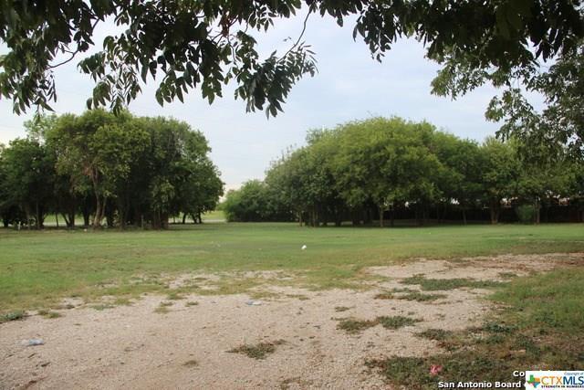 1561 N Heideke Street, Seguin, TX 78155 (MLS #354973) :: Erin Caraway Group