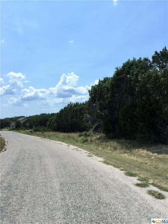 627 Hummingbird Hill, Canyon Lake, TX 78133 (MLS #355149) :: Magnolia Realty